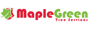 MapleGreen-Tree-Services